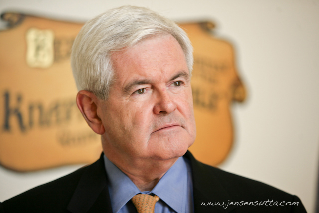 Newt Gingrich at Young America