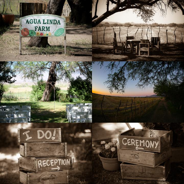 destination wedding photographer jensen sutta arizona